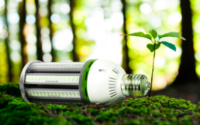 Merkan-Cia keeps going green